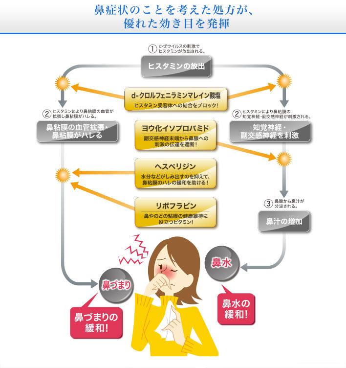 鼻に効くメカニズム 鼻症状のことを考えた処方が、優れた効き目を発揮