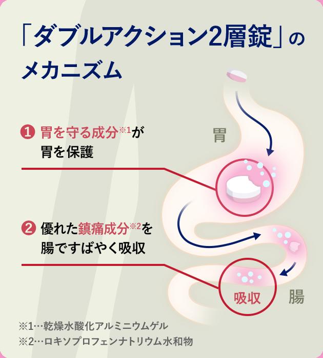 バファリンEX「ダブルアクション2層錠」のメカニズム 1.胃を守る成分*1が胃を保護 2.優れた鎮痛成分*2を腸ですばやく吸収