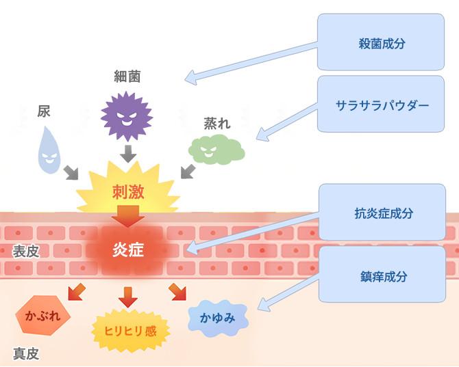 尿かぶれ(炎症)を引き起こすのは、「尿や便などの皮膚刺激物質」「細菌・カビ」「蒸れ」などですが、それらの温床になっているのが尿パッドです。また、形状や素材が肌に合わず、尿パッド自体がムレや擦れを引き起こすケースもあります。