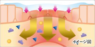 トリアムシノロンアセトニドが患部に直接作用します。
